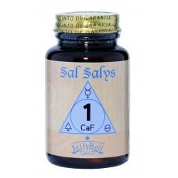 SAL SALYS CAF, Nº1